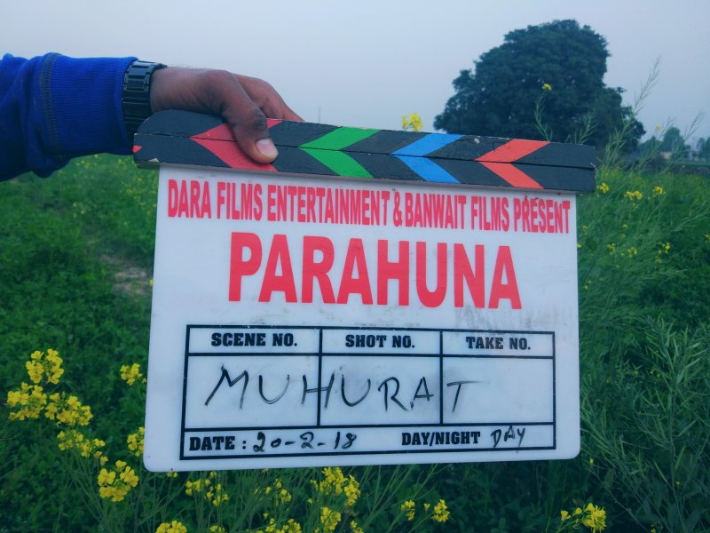 Parahuna Punjabi Debut Movie